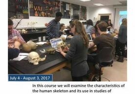 ANTH S464 Human Osteology